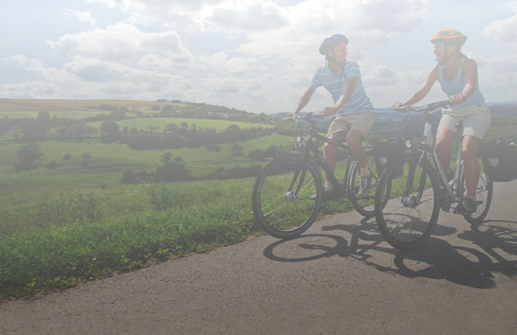 biciclette ebike mountain mtb
